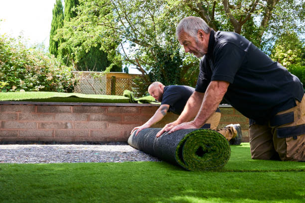 Two workers Installing artificial grass in modern garden of home