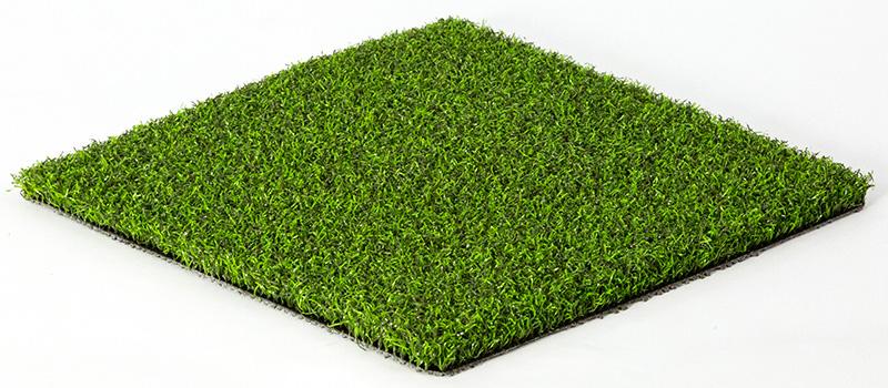 Eco 5