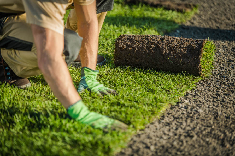 Guy putting on artifical grass