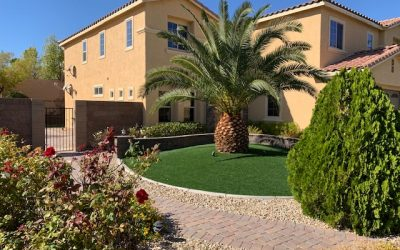 Vegas Artificial Grass with tree